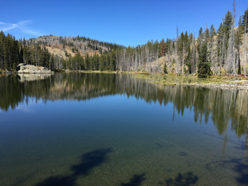 Shelf Lake 1