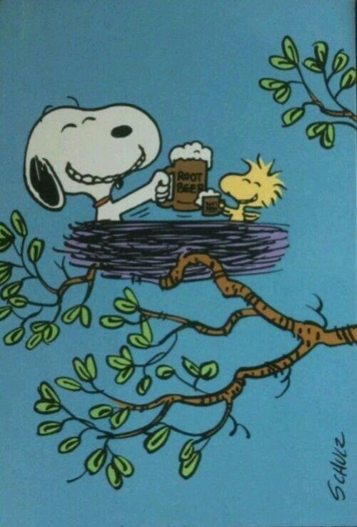 Snoopy 31